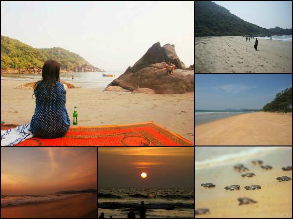கோவா கடற்கரைகள் :