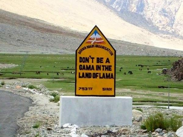 16. DON'T BE A GAMA IN THE LAND OF LAMA