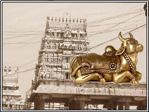 மாசிலாமணீஸ்வரர் கோவில் - வரலாறு, பூசை நேரம் மற்றும் முகவரி | Masilamaniswara  Temple, Thirumullaivoyal - History, Timings and How to Reach - Tamil  Nativeplanet