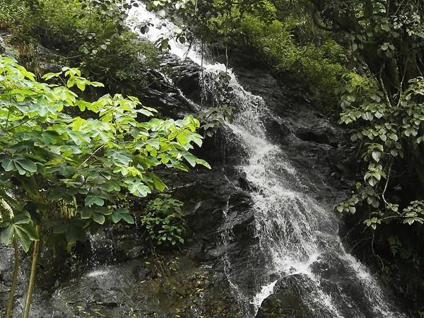 சித்தாபூர் சுற்றுலா - ஈர்க்கும் இடங்கள், செய்யவேண்டியவை மற்றும் எப்படி அடைவது