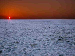 Rann Kutch The Salt Desert India