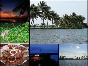 Let S Visit The Scenic Kuttanad Region Kerala