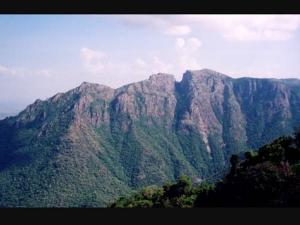 Mysterious Puliyancholai Hills