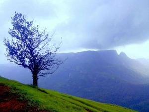 Best Places Visit When The Hill Station Matheran