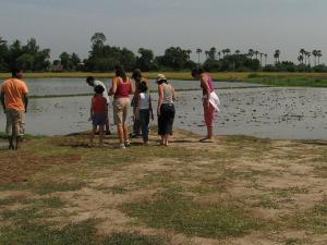 Did You Visit Pulicat Near Chennai