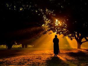 Let S Go This Nava Brindavana Near Anegundi
