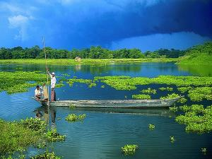 Let S Go Assam Summer Trip