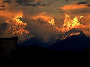 Let S Go Chaukori Uttarakhand