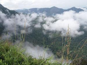Mudhumalai Forest Trip Bandipur National Park Needle Rock