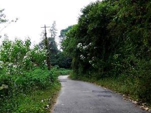 Let S Go Valparai Chalakudy Bike Ride