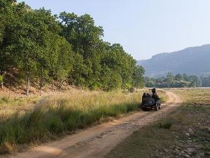 Top 6 Tiger Safari Destinations India