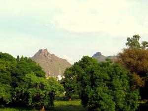 Chennai To Vellore An Exceptional Journey With Unforget