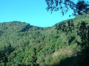 Dindigul Hills Let S Travel Dindigul Tourist Places