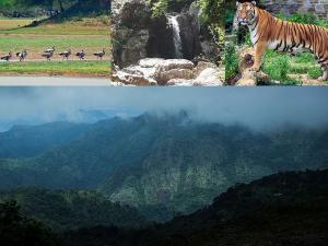 Best Places Visit Tirunelveli