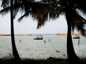 Let S Go Poovar Beach Near Thiruvananthapuram