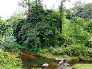 Attakatti Tourism 2018 Places Visit Things Do Best Time V