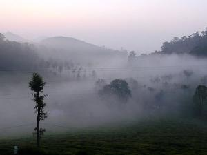 Kotagiri Tourism Places Visit Things Do