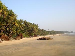 Kizhunna Ezhara Beach Travel Guide Attractions How Reach