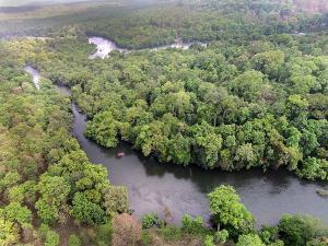 Anshi National Park Karwar Timings Attractions How Reach