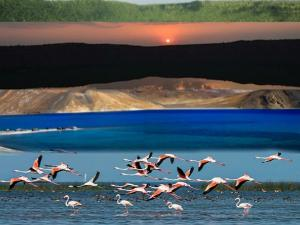 Salt Water Lakes India Attractions Things Do