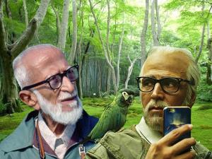 Salim Ali Bird Sanctuary Best Time Visit Entry Fee How R
