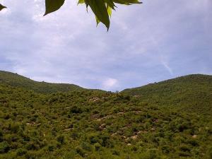 Places Visit Dharmapuri Things Do How Reach