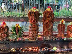 Top Snake Temples Tamilnadu