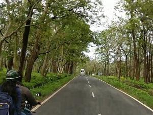 Bandipur Travel Guide Attractions Things Do How Reach