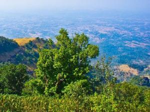 Bhimashankar Travel Guide Attractions Things Do How Reach