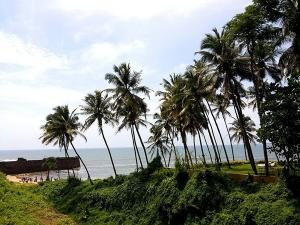 Candolim Beach Travelguide Attraction Things Do How Reach