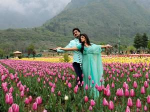 Beautiful Gardens India
