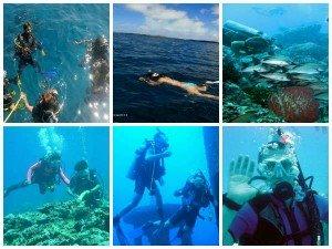 Best Scuba Diving Destinations India