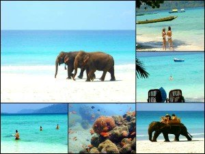 Best Places India Relax Unwind