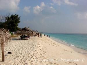 The Wonder Island Arabian Sea