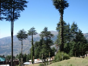Travel Patnitop The Less Explored Hill Station Kashmir