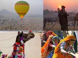 Let S Go Pushkar Camel Safari