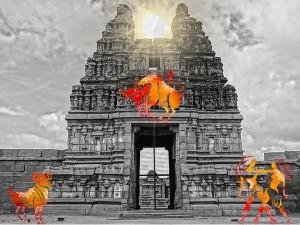 Travel This Temple At Varadharaja Perumal Temple