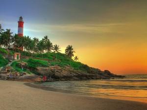 Let S Go Pathiramanal Island Near Kerala