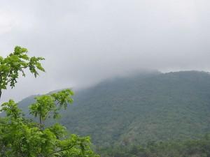A Green Travel Toranmal Maharashtra