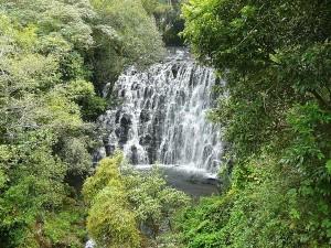 Let S Go Unchalli Falls Near Sirsi