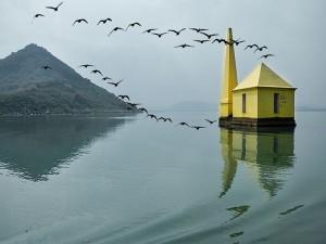 Best Atractive Places Chilika Lake Near Odisha