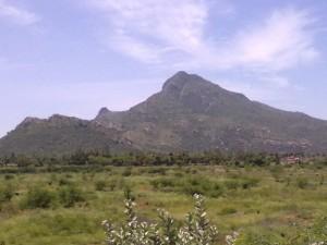 Let S Go Venugopala Parthasarathy Temple Near Tiruvanamalai