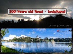 Year Old Road Kodaikanal Mountain