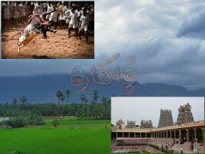 Madurai City Travel Guide Attraction Things Do