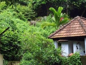 Panachikkadu Temple Kottayam History Pooja Timings How R