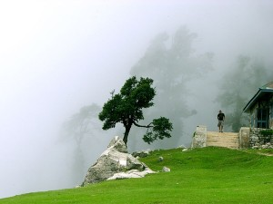 Bhagsu Travel Guide Attractions Things Do How Reach