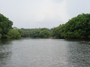 Cauvery Fishing Camp Resort