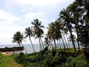 Candolim Beach Travelguide Attraction Things Do How Reach