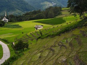 Ziro Travel Guide Places To Visit Things To Do And How To