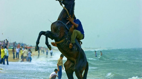 தமிழ்நாட்டின் கடற்கரைகளுக்கு ஒரு பயணம்!